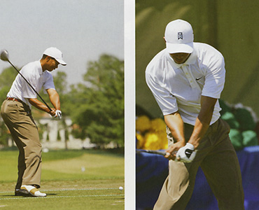 Tiger Wood Swing